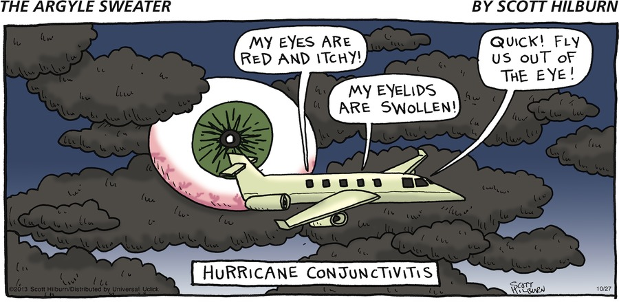 Voice 1 from airplane: My eyes are red and itchy! Voice 2 from airplane: My eyelids are swollen! Voice 3 from airplane: Quick! Fly us out of the eye! Hurricane Conjunctivitis