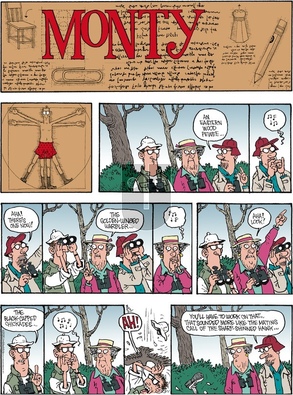 Monty on Sunday March 22, 2020 Comic Strip