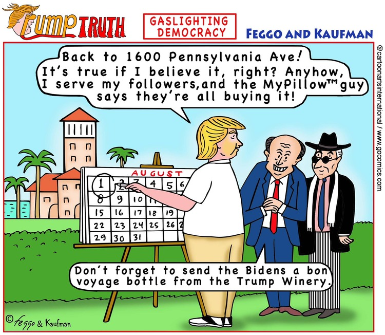ViewsBusiness Comic Strip for June 06, 2021