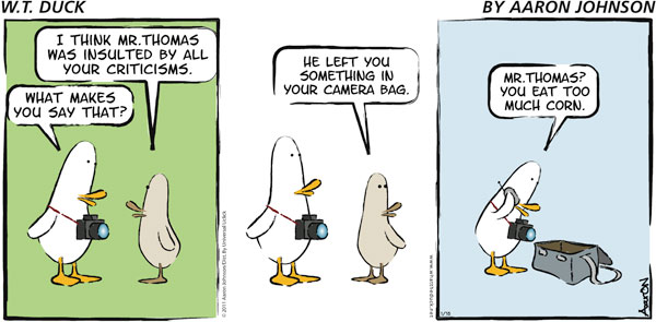 W.T. Duck for Aug 19, 2018 Comic Strip