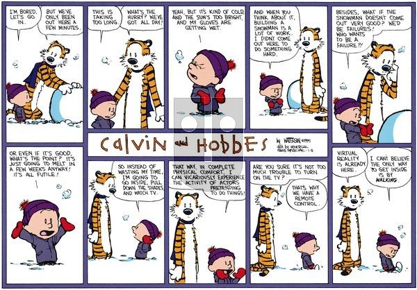 Calvin and Hobbes - Sunday January 8, 1995 Comic Strip