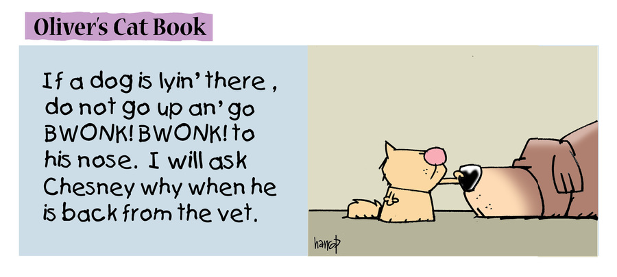 Ten Cats Comic Strip for July 21, 2021