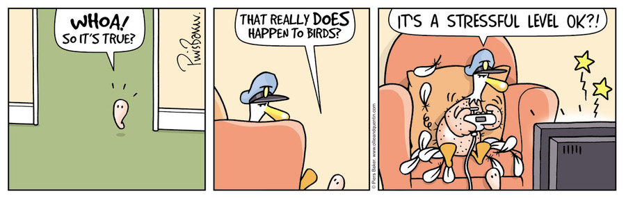 Ollie and Quentin Comic Strip for June 01, 2019