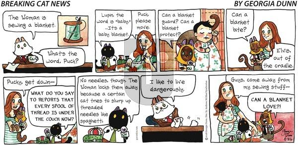 Breaking Cat News on Sunday August 26, 2018 Comic Strip