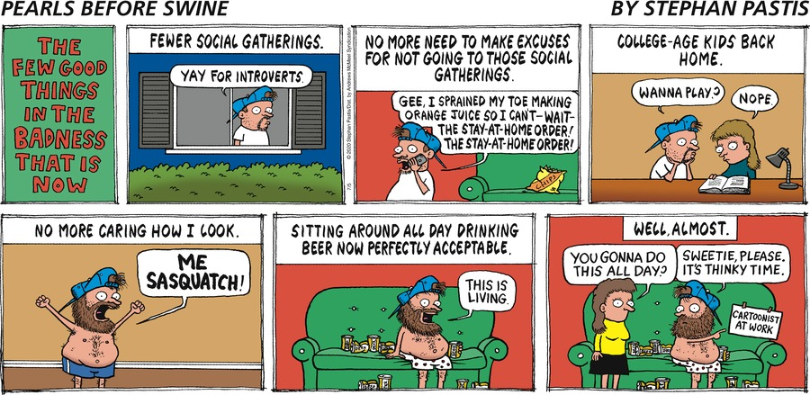 Pearls Before Swine by Stephan Pastis on Sun, 05 Jul 2020