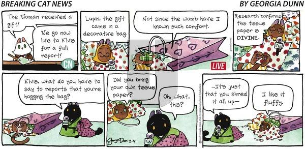 Breaking Cat News on Sunday February 4, 2018 Comic Strip