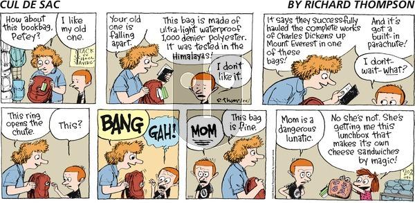 Cul de Sac - Sunday August 19, 2012 Comic Strip