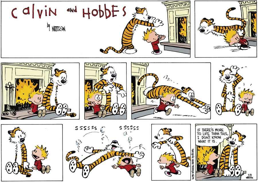 Calvin and Hobbes Comic Strip for February 25, 1990