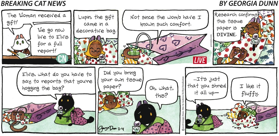 Breaking Cat News for Feb 4, 2018 Comic Strip