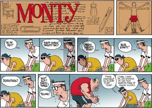 Monty on Sunday November 29, 2015 Comic Strip