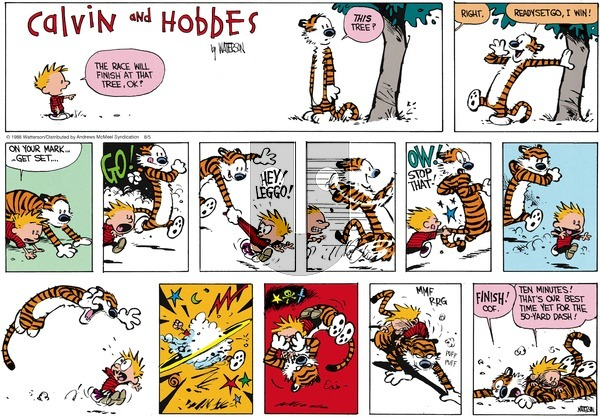 Calvin and Hobbes - Sunday August 5, 2018 Comic Strip