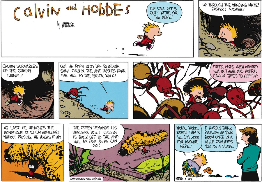 Calvin and Hobbes Comic Strip for May 08, 1988