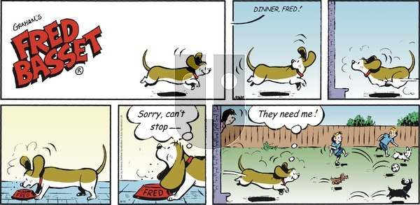 Fred Basset - Sunday August 16, 2020 Comic Strip
