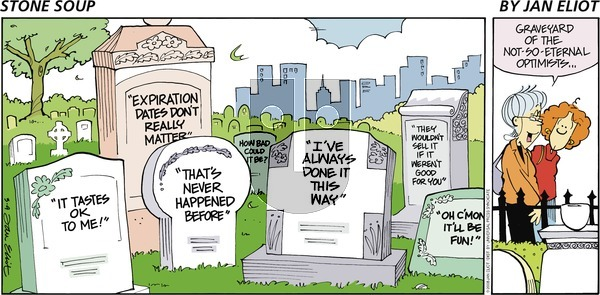 Stone Soup on Sunday March 9, 2008 Comic Strip