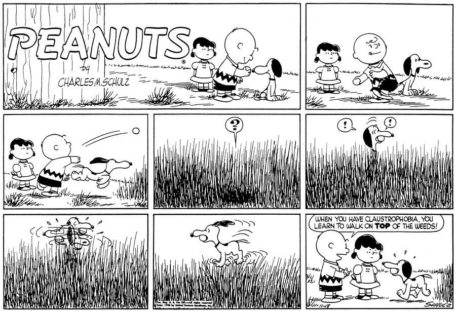 Peanuts Comic Strip for November 18, 1956
