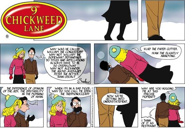 9 Chickweed Lane on Sunday December 13, 2015 Comic Strip