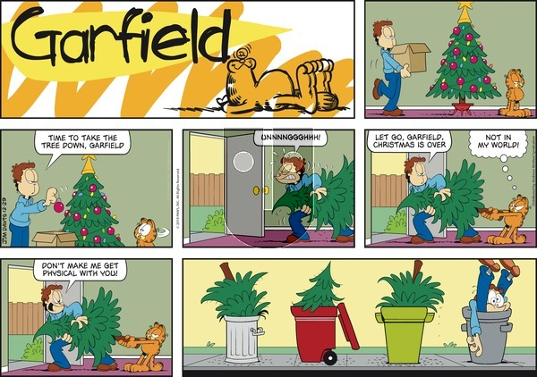 Garfield on Sunday December 29, 2019 Comic Strip