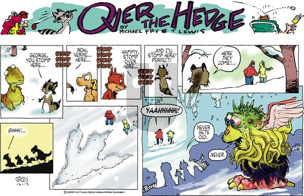 Over the Hedge on Sunday December 13, 2020 Comic Strip