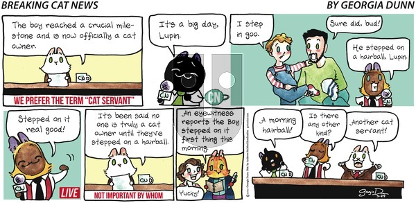 Breaking Cat News - Sunday March 29, 2020 Comic Strip