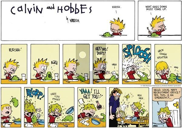 Calvin and Hobbes - Sunday November 1, 2020 Comic Strip