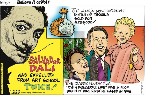 Ripley's Believe It or Not on Sunday December 23, 2018 Comic Strip