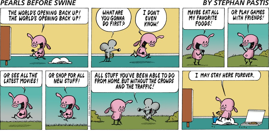 Pearls Before Swine Comic Strip for August 08, 2021