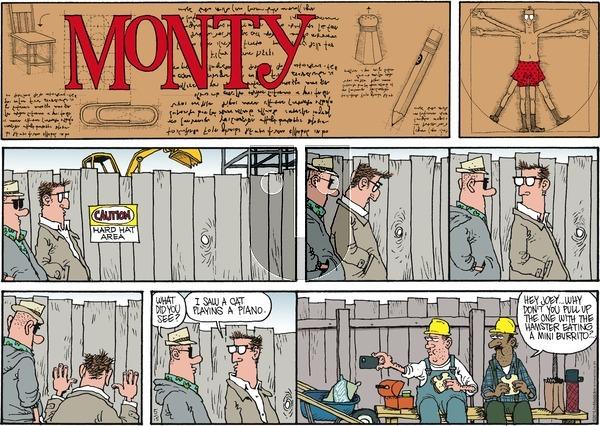 Monty on Sunday May 15, 2016 Comic Strip