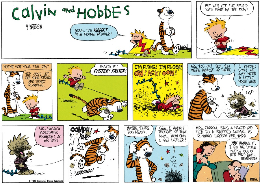 Calvin and Hobbes Comic Strip for May 03, 1987