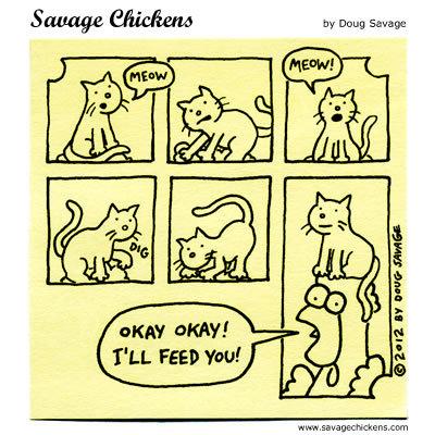 Cat: Meow. Cat: Meow. Chicken: Okay, okay! I'll feed you!
