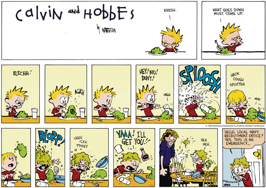 Calvin and Hobbes Comic Strip for November 01, 2020