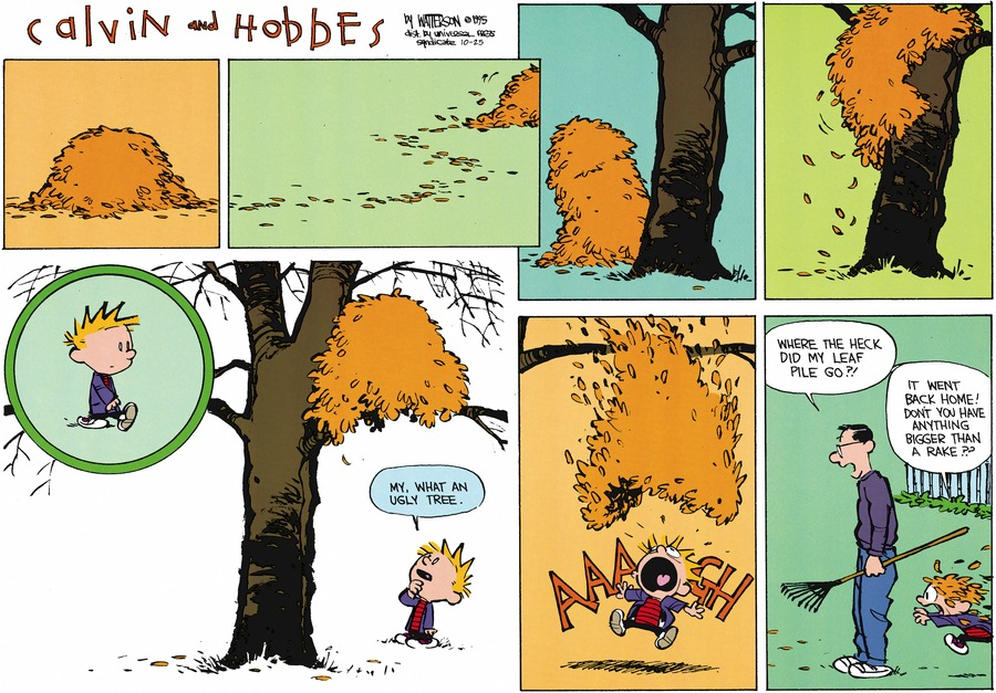 Calvin and Hobbes Comic Strip for October 25, 2015