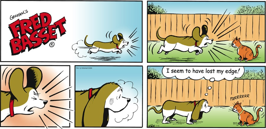 Fred Basset Comic Strip for November 18, 2012