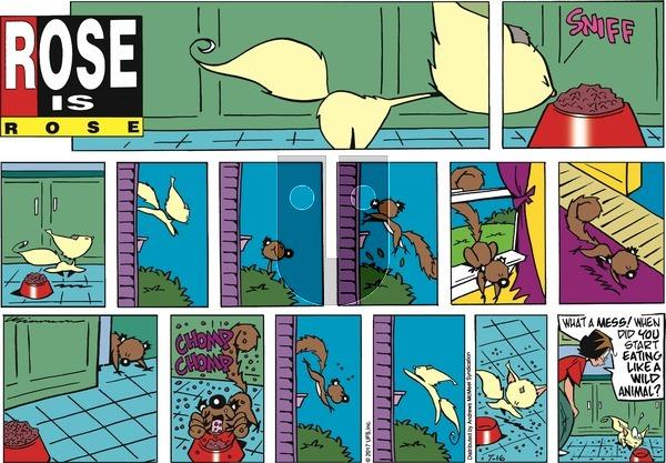 Rose is Rose on Sunday July 16, 2017 Comic Strip