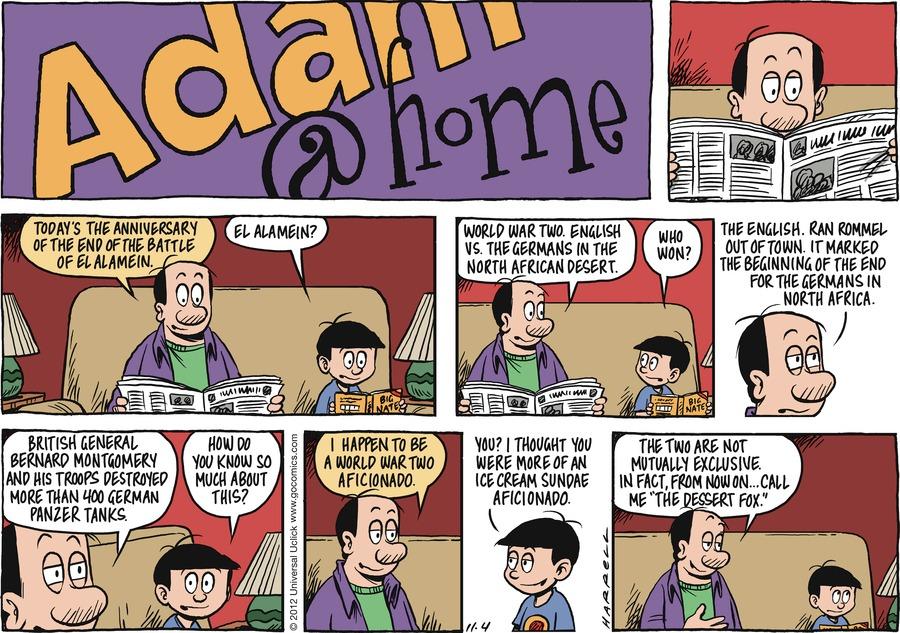Adam@Home for Nov 4, 2012 Comic Strip