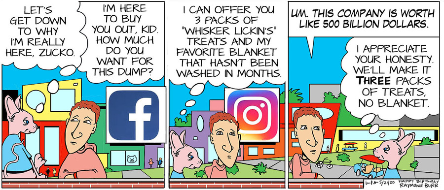 The Big Picture Comic Strip for May 21, 2020