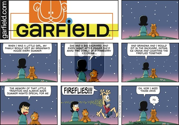 Garfield on Sunday July 17, 2016 Comic Strip