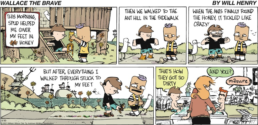 Wallace the Brave Comic Strip for May 30, 2021