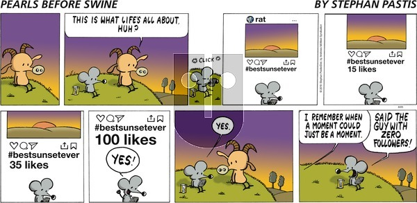 Pearls Before Swine on Sunday August 25, 2019 Comic Strip