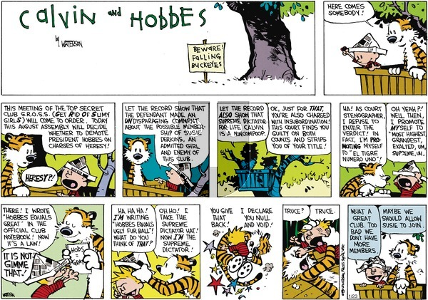 Calvin and Hobbes - Sunday March 11, 1990 Comic Strip