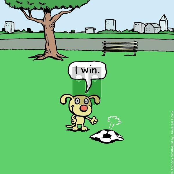 Cattitude — Doggonit - Sunday April 5, 2020 Comic Strip