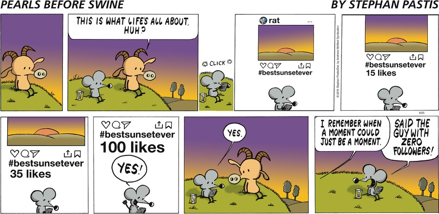 Pearls Before Swine Comic Strip for August 25, 2019