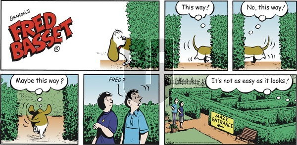 Fred Basset on Sunday August 2, 2020 Comic Strip