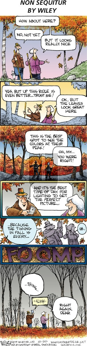 Non Sequitur on Sunday October 20, 2019 Comic Strip