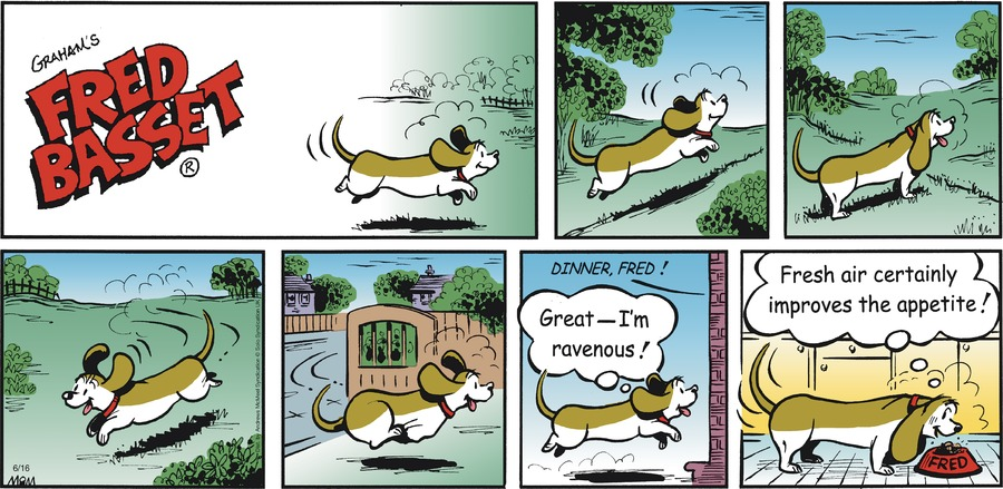 Fred Basset Comic Strip for June 16, 2019