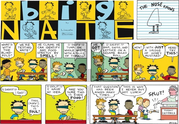 Big Nate on Sunday January 7, 2018 Comic Strip
