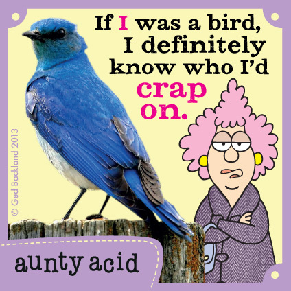 Aunty Acid for Dec 11, 2013 Comic Strip