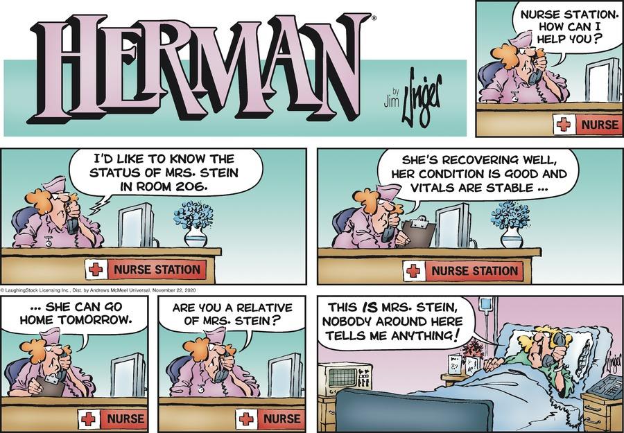 Herman Comic Strip for November 22, 2020
