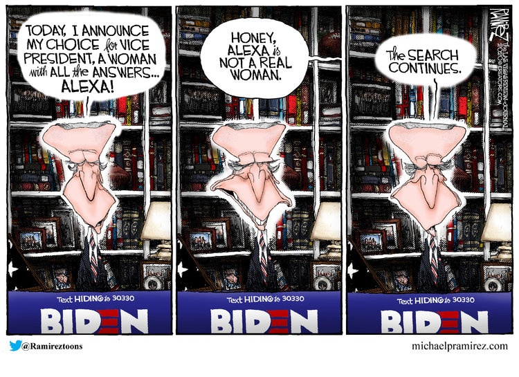 Michael Ramirez Comic Strip for August 06, 2020