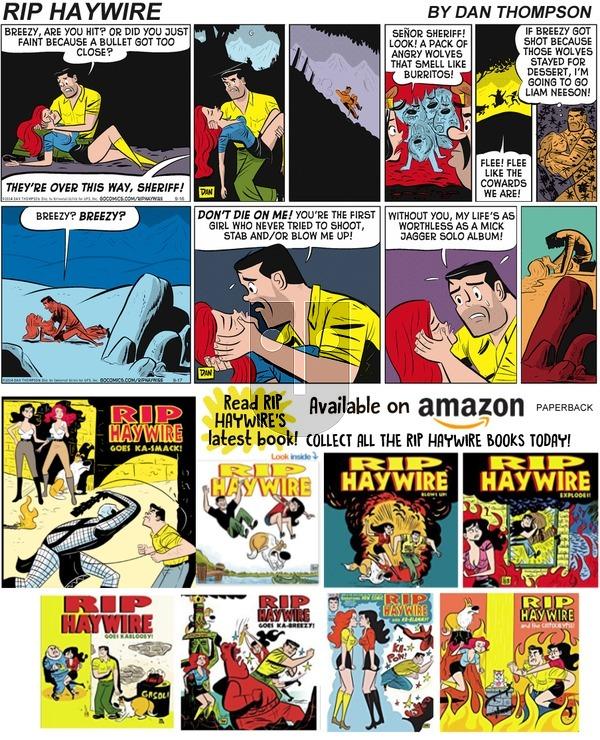 Rip Haywire on Sunday November 24, 2019 Comic Strip