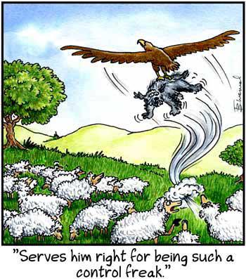Birdbrains Comic Strip for December 10, 2016